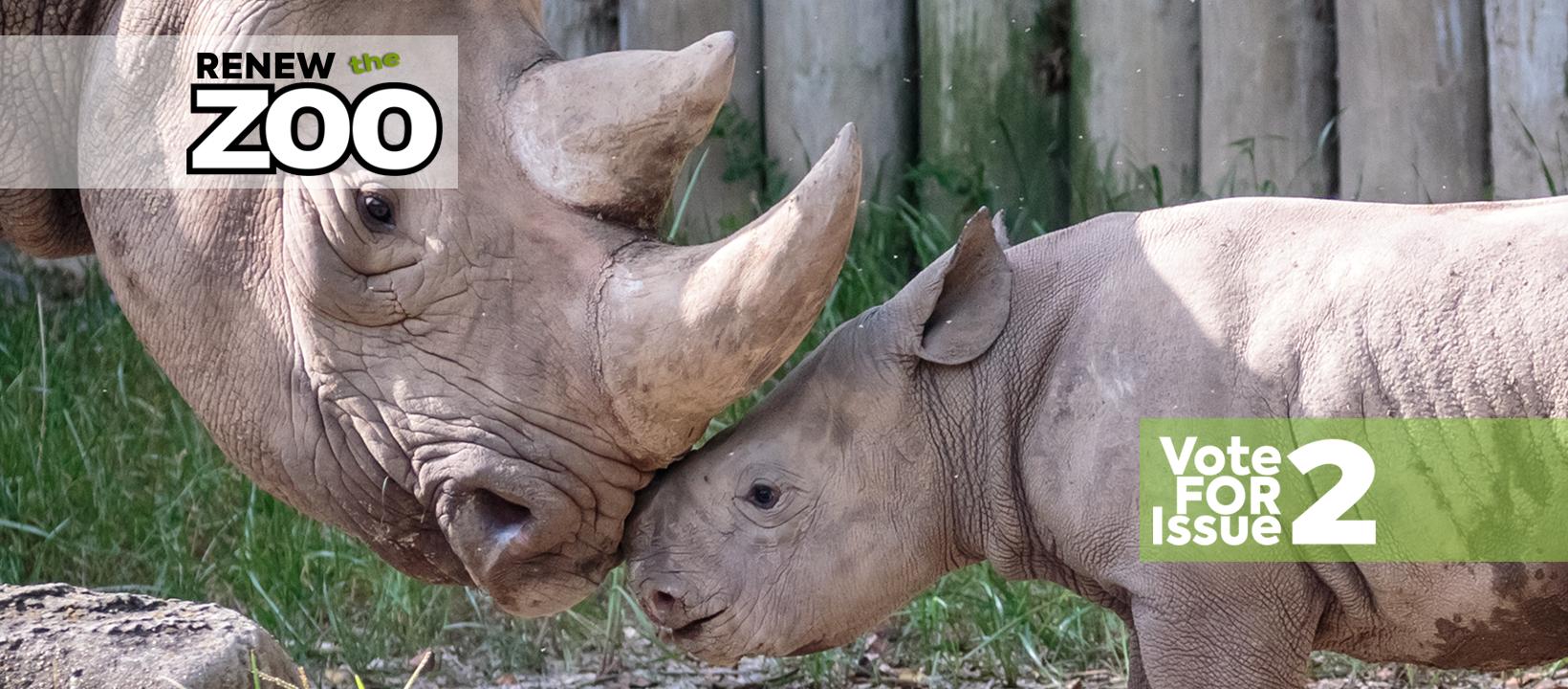 rhino_family
