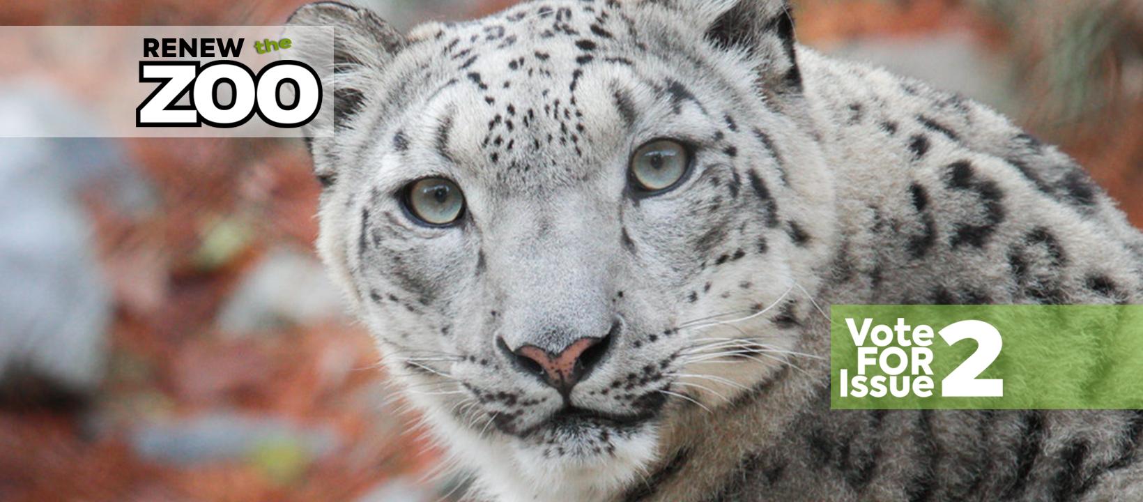 snowleopard_renji